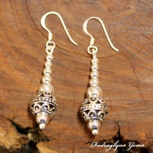 Silver Charmed Earrings