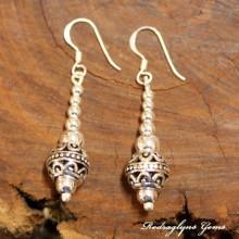 Silver Charmed Earrings